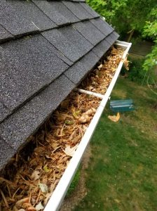 Gutter Cleaning Needed